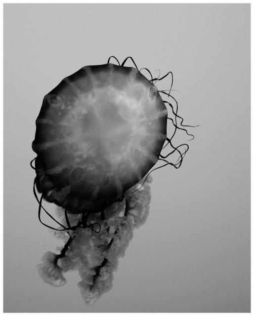 2013-06-07_0001